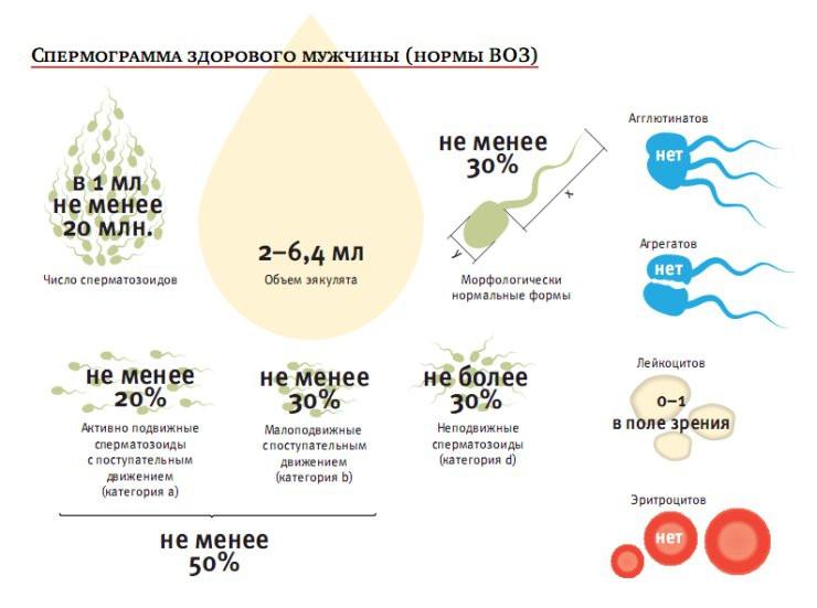 Лечение для улучшения подвижности сперматозоидов